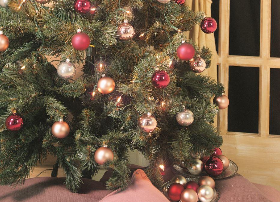 Kerstboom kopen bij GroenRijk | GroenRijk.nl